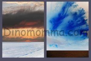 Gulf Views1